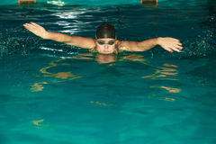女子运动员游泳在水池的蝶泳 库存照片