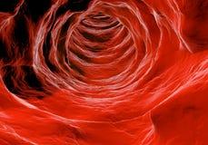 Внутренний взгляд человеческого организма Вирус в организме Органическая структура анатомии Стоковая Фотография