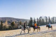 Τρία κορίτσια πηγαίνουν οδήγηση πλατών αλόγου Στοκ φωτογραφία με δικαίωμα ελεύθερης χρήσης
