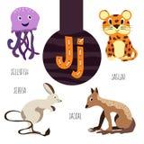 乐趣动物字母表发展和得知的学龄前孩子 套逗人喜爱的森林,国内和海洋 免版税库存图片