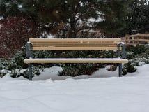 在雪的公园长椅 免版税库存照片