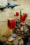 κόκκινο κρασί πηγών Στοκ Εικόνες