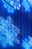 在一个大厦门面的圣诞灯装饰在蓝色口气 免版税库存照片