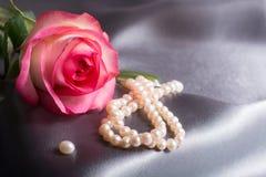 情人节概念,母亲节概念,在丝绸灰色背景的桃红色玫瑰与珍珠 免版税库存图片