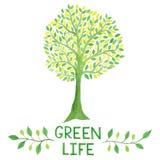 Логотип акварели зеленый с зеленым деревом зеленая жизнь Стоковое Фото