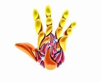 容量标志开放手 火棕榈商标 免版税库存图片