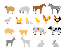 牲口汇集集合 平的样式字符 库存照片