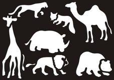 动物设置了通配 免版税图库摄影