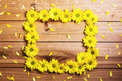 Φρέσκα λουλούδια και πέταλα άνοιξη που κάνουν το πλαίσιο στο αγροτικό ξύλο Στοκ φωτογραφίες με δικαίωμα ελεύθερης χρήσης
