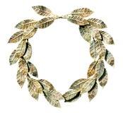 被镀青铜的查出的月桂树花圈 免版税库存图片