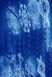 在一个大厦门面的圣诞灯装饰在蓝色口气 免版税库存图片