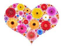 从杂色的花的心脏标志在白色 免版税库存照片