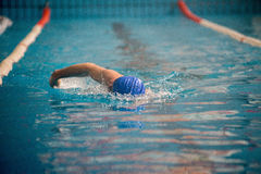 专业人游泳者游泳 免版税库存图片
