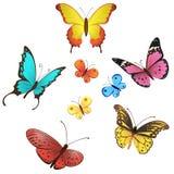 Διανυσματικό σύνολο πεταλούδων Στοκ Εικόνες