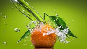 与绿色叶子的蜜桔和水在绿色飞溅 免版税图库摄影