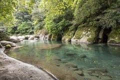 轻轻地流动的溪 免版税库存图片