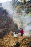 Παιχνίδι αγοριών και κοριτσιών με τις χήνες Στοκ φωτογραφία με δικαίωμα ελεύθερης χρήσης