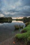 镇静池塘在日出的公园 库存照片
