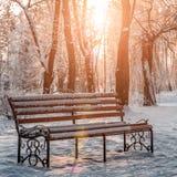 长凳在雪的公园 免版税库存图片