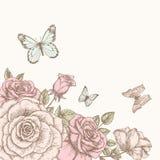有蝴蝶的罗斯 免版税图库摄影