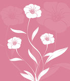 конструкция флористическая Стоковые Изображения