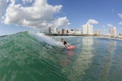 冲浪的冲浪者女孩行动 库存照片