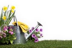 Το πότισμα μετάλλων μπορεί και λουλούδια Στοκ εικόνες με δικαίωμα ελεύθερης χρήσης