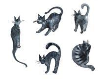 套元素猫剪影水彩例证 库存照片
