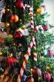 在圣诞树的棒棒糖 图库摄影