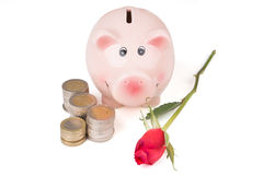 有玫瑰的存钱罐和堆硬币 免版税库存照片