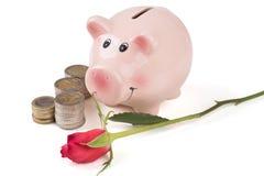 有玫瑰的猪存钱罐和堆硬币 免版税库存照片