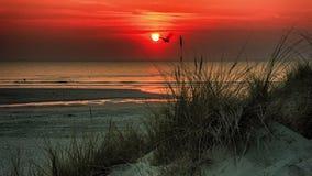 помеец над заходом солнца моря Ландшафт взморья лета с песчанными дюнами акции видеоматериалы