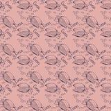 Безшовная текстура с плодоовощами какао и листьями какао Плодоовощ какао на коричневой предпосылке Картина для упаковывая какао и Стоковые Фотографии RF