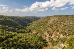 Ландшафт горы, верхняя Галилея в Израиле Стоковые Изображения RF
