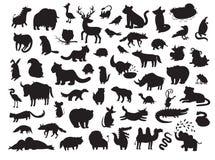 Ευρασιατικές σκιαγραφίες ζώων, που απομονώνονται στην άσπρη διανυσματική απεικόνιση υποβάθρου Στοκ εικόνα με δικαίωμα ελεύθερης χρήσης