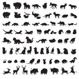 Θηλαστικά του κόσμου Πρόσθετο μεγάλο σύνολο γκρίζων σκιαγραφιών ζώων Στοκ Εικόνες