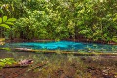 天堂水池甲米府,泰国 库存照片