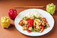 炸鸡、热和甜椒和米,亚洲食物 免版税库存照片