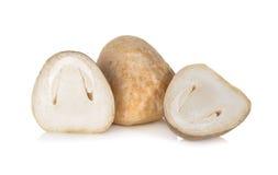 整体和半裁减草菇在白色 免版税库存图片
