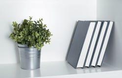 有有些书的植物在架子 图库摄影