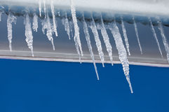 在屋顶的冰柱 蓝色墙壁背景 冬天天气概念 软绵绵地集中 库存照片