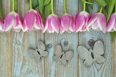 与桃红色白色郁金香的老灰色蓝色木背景连续毗邻和与木春天夏天蝴蝶的空的拷贝空间 免版税库存图片