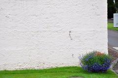 与蓝色和红色花的装饰花盆在白色墙壁附近 免版税库存照片