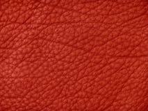 кожаная красная текстура Стоковое Фото
