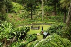 在圣赫勒拿海岛神志正常的谷的拿破仑坟茔 免版税库存照片