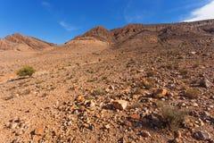 ландшафт Марокко Стоковые Изображения RF