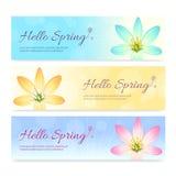 套五颜六色的你好春季横幅 库存照片