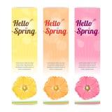 套在垂直的五颜六色的你好春季横幅 图库摄影