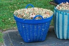 废物篮 库存图片