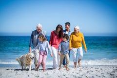 与他们的狗的愉快的家庭在海滩 图库摄影